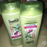 Suave® Professionals Seek Conditioner uploaded by Ashlee N.