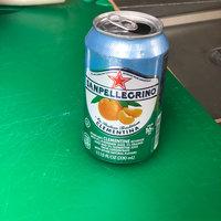 San Pellegrino® Limonata Sparkling Lemon Beverage uploaded by Jenny G.