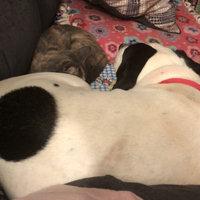 Beneful Dog Treat Baked Delights® Hugs uploaded by Joelyn M.