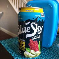 Blue Sky® Cane Sugar Ginger Ale Soda 6-12 fl. oz. Cans uploaded by Carol L.