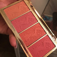 tarte Blush Bliss Blush Palette uploaded by Nancy O.