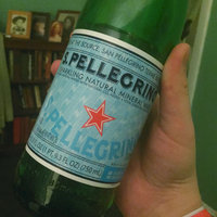 San Pellegrino® Sparkling Natural Mineral Water uploaded by Jillian D.