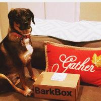 BarkBox uploaded by Maria A.