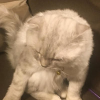 TEMPTATIONS™ Classic Treats For Cats Seafood Medley Cat Treats uploaded by member-fba0c