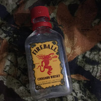 Fireball Cinnamon Whisky uploaded by Faith M.