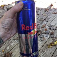 Red Bull Energy Drink uploaded by Savannah L.