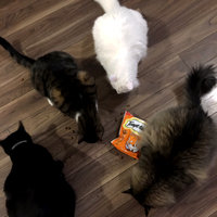 TEMPTATIONS™ Classic Treats For Cats Tantalizing Turkey Cat Treats uploaded by Carrie L.