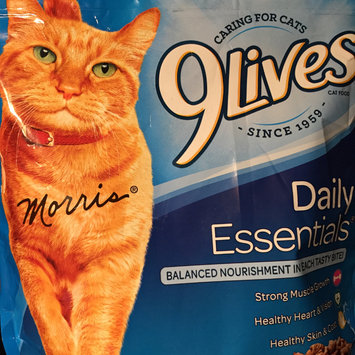 Photo of 9Lives Daily Essentials Dry Cat Food, 12-Pound uploaded by Jessica T.