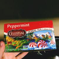 Celestial Seasonings® Peppermint Herbal Tea Caffeine Free uploaded by Moriah B.