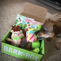 BarkBox uploaded by Taylor S.