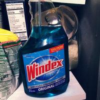 Windex Original Glass Cleaner Spray uploaded by Karla O.
