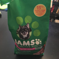 Iams™ Proactive Health™ Adult Small & Toy Breed Dog Food uploaded by Desi B.