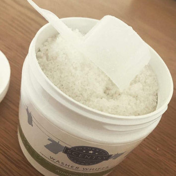 Photo of Scentsy Washer Whiffs - Luna 16 oz uploaded by Lorelle T.