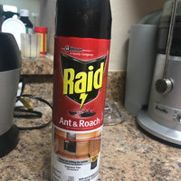 Raid Ant & Roach Killer Fragrance Free uploaded by Carla B.