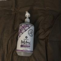 Alaffia Everyday Shea - Moisturizing Body Wash Lavender - 32 oz. uploaded by Chelsea M.