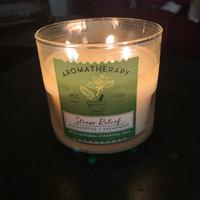 Bath & Body Works® Aromatherapy STRESS RELIEF - EUCALYPTUS & SPEARMINT 3-Wick Candle uploaded by Asia L.