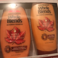 Garnier Whole Blends Moroccan Argan and Camellia Oils Extracts Illuminating Conditioner uploaded by Brianna R.