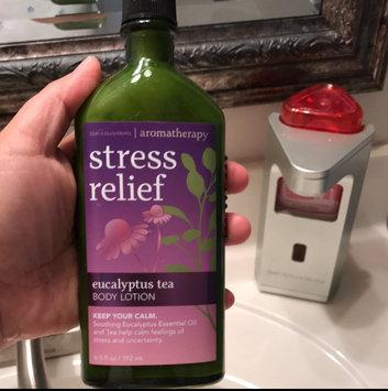 Photo of Bath & Body Works Aromatherapy Stress Relief Eucalyptus Spearmint Body Wash & Foam Bath uploaded by Del C.