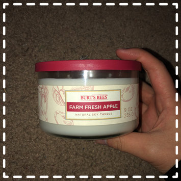 Photo of Blyth Home Scents 111217 Burts Bees Farm Fresh Apple Small Jar Candle Pack of 4 uploaded by Annie N.