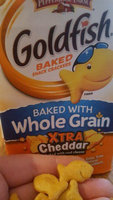 Pepperidge Farm Goldfish Flavor Blasted Xtra Cheddar Baked Snack Crackers uploaded by Kassie B.