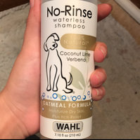 Wahl No-Rinse Oatmeal Formula Coconut Lime Verbena Pet Waterless uploaded by Melaney M.