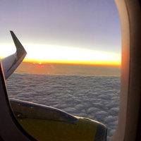 Spirit Airlines uploaded by Alyssa D.