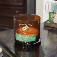 Bath & Body Works® Aromatherapy STRESS RELIEF - EUCALYPTUS & SPEARMINT 3-Wick Candle uploaded by Kayla S.