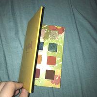 LORAC Little Black Palette uploaded by Tessa C.