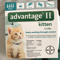 AdvantageA II 4-Pack Flea Kitten Treatment uploaded by Mere A.