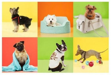 Martha Stewart for Petsmart  uploaded by Christine D.