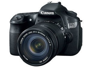 Photo of Canon EOS Rebel 60D 18MP Digital SLR Camera with 18-135mm IS Lens - uploaded by Elizabeth B.