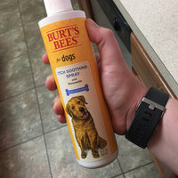 Burt's Bees Burts Itch Soothing Dog Spray uploaded by Tayler C.