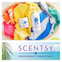 Layers by Scentsy Dryer Disks (Luna) uploaded by Leanne D.