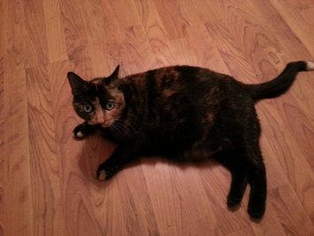 Photo of Pounce Cat Treats uploaded by Dawn U.