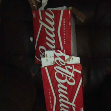 Photo of Budweiser Beer uploaded by Mikail A.
