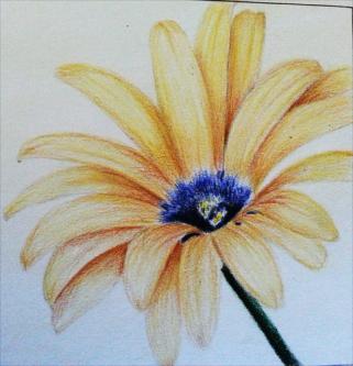 Photo of Sanford Prismacolor Premier Colored Pencils Set uploaded by Anna M.