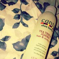 Cantu Shea Butter No Drip Hair & Scalp Oil uploaded by Tara W.