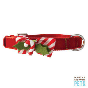 Martha Stewart for Petsmart  uploaded by Jessica D.