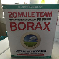 Borax 20 Mule Team  All Natural Laundry Booster & Multi-Purpose uploaded by Lizzette G.
