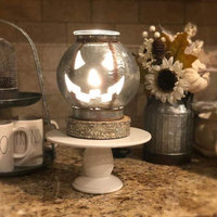 Scentsy Warmers uploaded by Dana D.