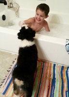Mr. Bubble Bath Liquid uploaded by Chelsie P.