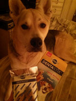 Pedigree® Dentastix® Daily Oral Care Treats uploaded by Kassie B.
