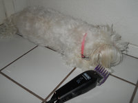 Wahl Pet Clipper Kit uploaded by Yesenia S.