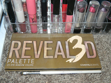 Coastal Scents Revealed 3 Palette uploaded by theresa s.