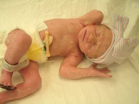 Pampers Swaddlers Diapers  uploaded by Angela G.