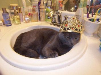 Whiskas WHISKASA TEMPTATIONSA Mega Cat Treat uploaded by Jada E.