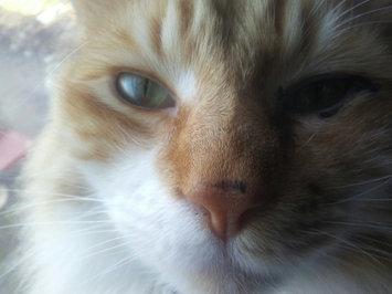 Photo of eos™ Shimmer Lip Balm uploaded by jennifer w.