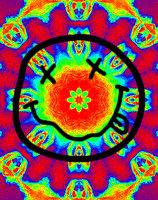 David Jumbo Sunflower Seeds (5.25 oz, 12 ct.) uploaded by Juan G.