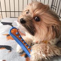 Hartz Tiny Dog Dental Duo Dog Toy Edible Chew Combo (Set of 3) uploaded by Angela R.