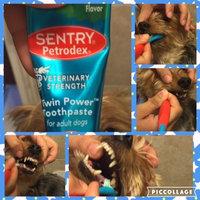 SENTRY Petrodex Veterinary Strength Adult Dog Dental Kit uploaded by Elisandra O.